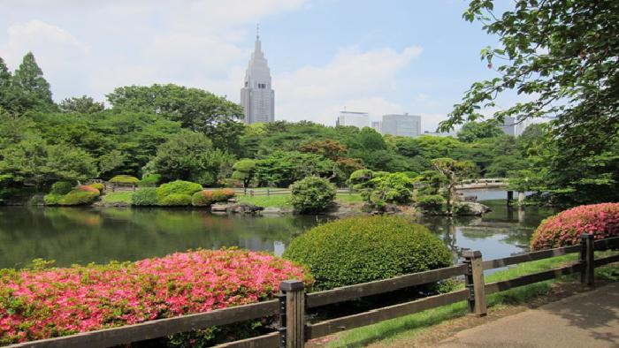 Shinjuku Gyoen Japanese Garden Tokyo