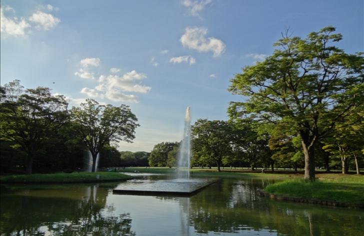 Yoyogi park pond