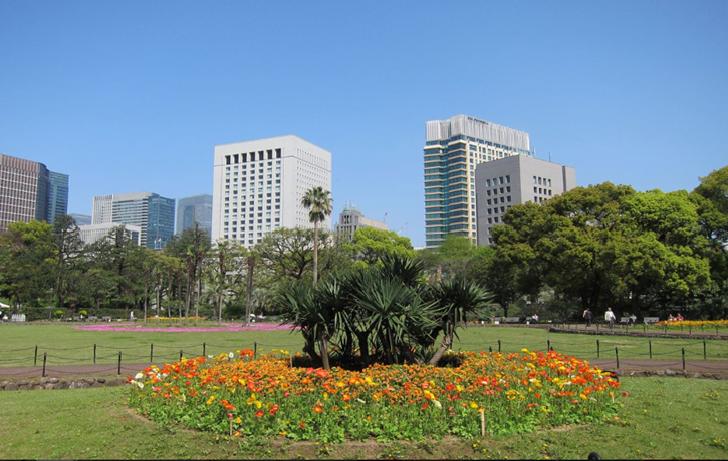 Hibiya Park Flowers
