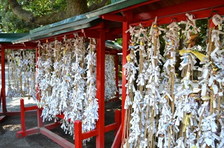 TOKYO TRAVEL Omikuji tied up