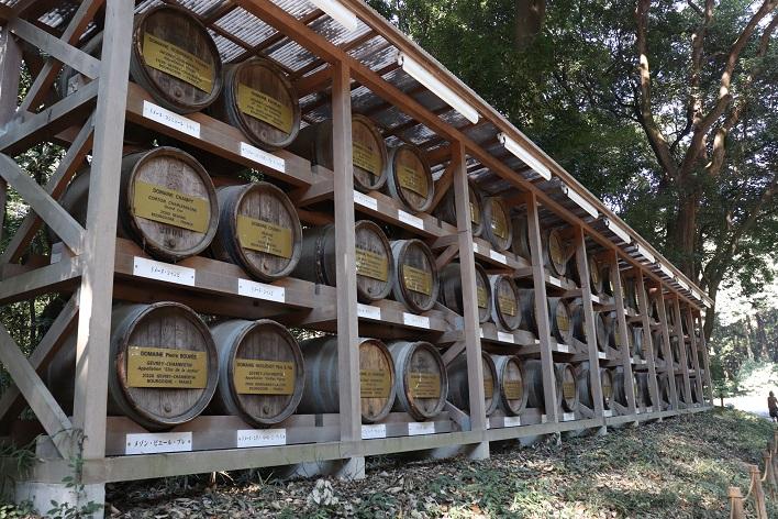 Meiji Jingu Shrine wine barrels