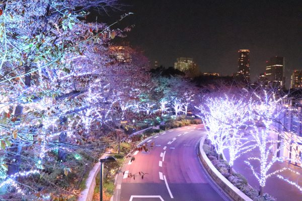 Tokyo Midtown Star Ride Road