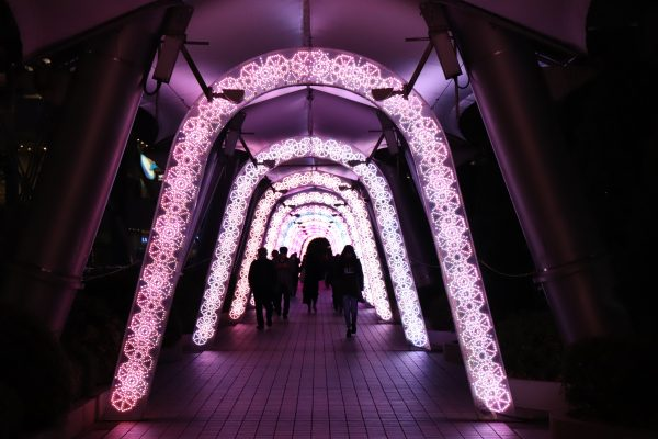 TOKYO Christmas Lights at Tokyo Dome City Milky Way