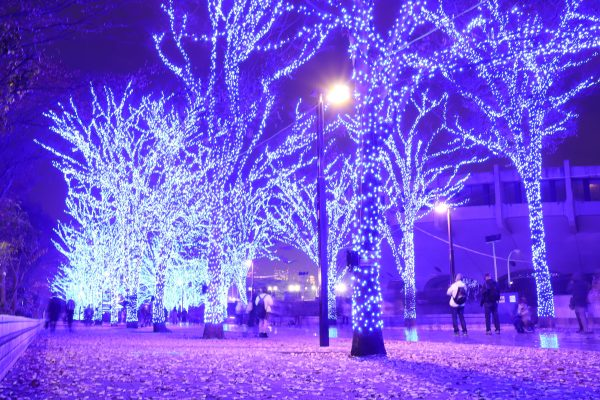 Tokyo Blue Grotto Christmas lights in Shibuya Japan from side