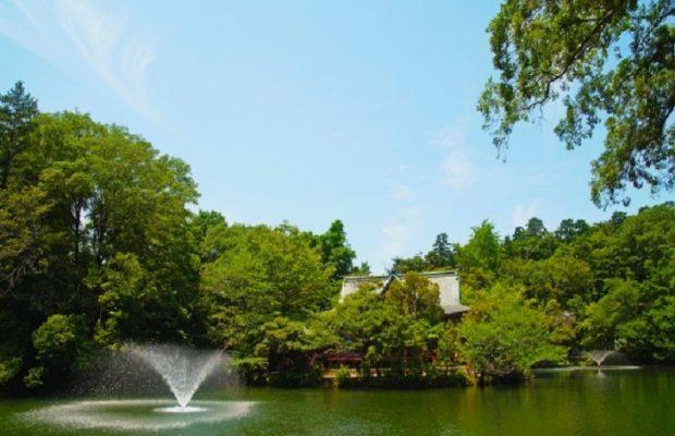 TOKYO Inokashira Park in Japan