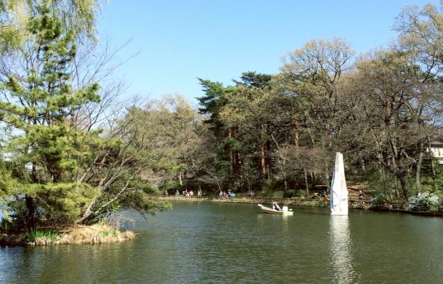 TOKYO Shakujii Park in Japan