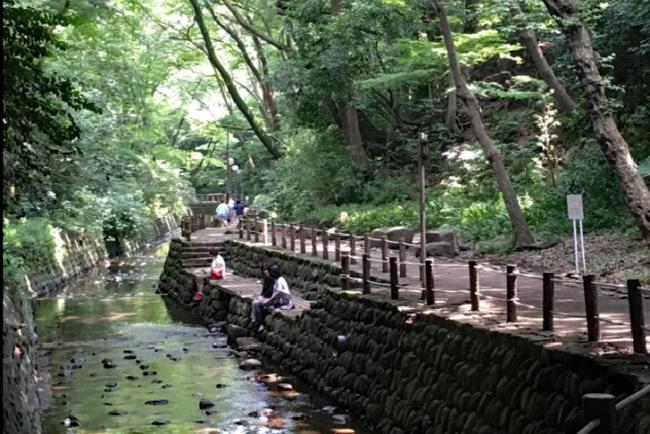 Todoroki Keikoku ravine Tokyo relaxting people