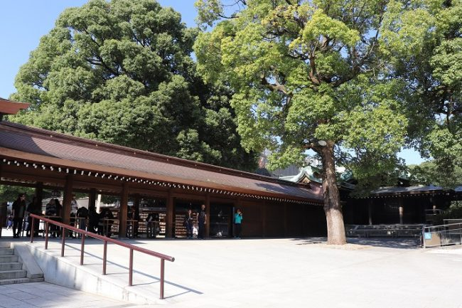 Meiji Jingu Shrine Nature