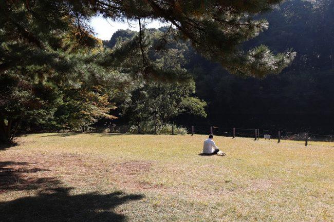 Meiji Jingu Shrine poud