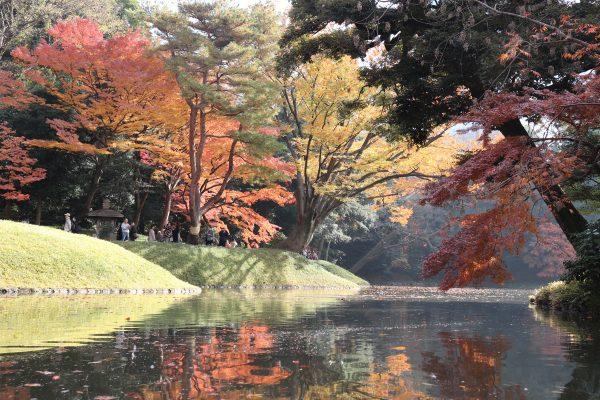 TOKYO Koishikawa Korakuen Garden in Japan
