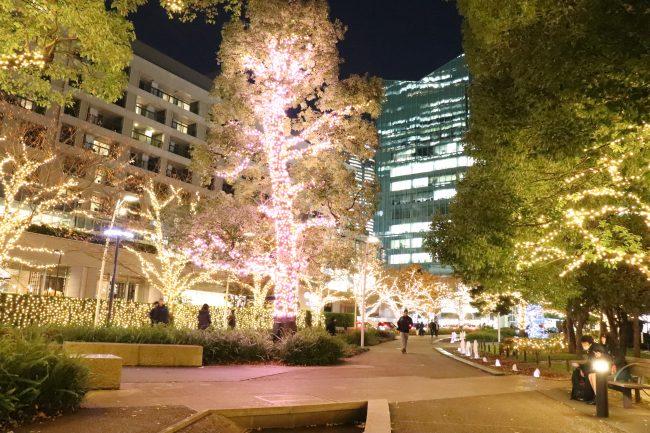 Tokyo Midtown Miracle tree
