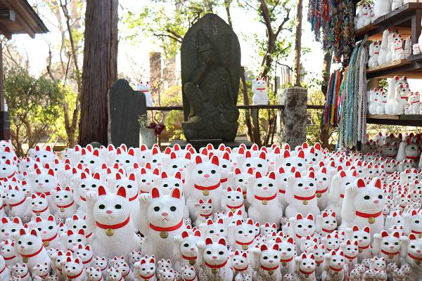 TOKYO Gotokuji Temple | Maneki Neko – Lucky cat