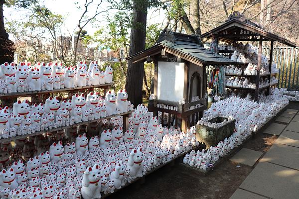 Gotokuji temple Maneki Neko